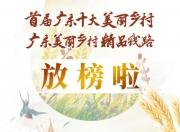 """海丰县附城镇新山村获选""""首届广东十大美丽乡村""""(视频)"""