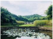 陆河华侨城·螺溪谷迎来节后游园小高潮