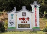 陆河县河口镇田墩日耀油柑基地