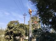 陆河北溪线供电改造工程按时竣工