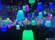 陆河世外梅园艺术灯光秀梅花节