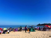 """广东今年试点9个""""美丽海滩"""" 红海湾榜上有名"""