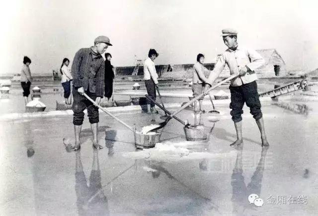 晒盐记 ——陆丰金厢镇最后的盐町! 海陆丰文化 第21张