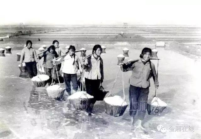 晒盐记 ——陆丰金厢镇最后的盐町! 海陆丰文化 第22张