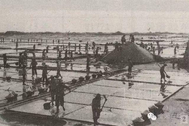 晒盐记 ——陆丰金厢镇最后的盐町! 海陆丰文化 第18张