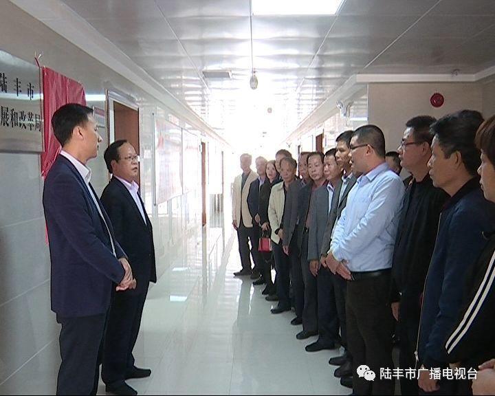 陆丰市一批新成立的工作机构挂牌 陆丰 第9张