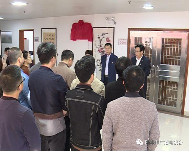 陆丰市一批新成立的工作机构挂牌 陆丰 第15张