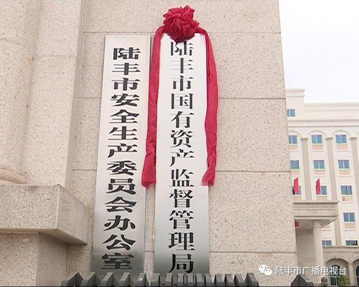 陆丰市一批新成立的工作机构挂牌 陆丰 第6张