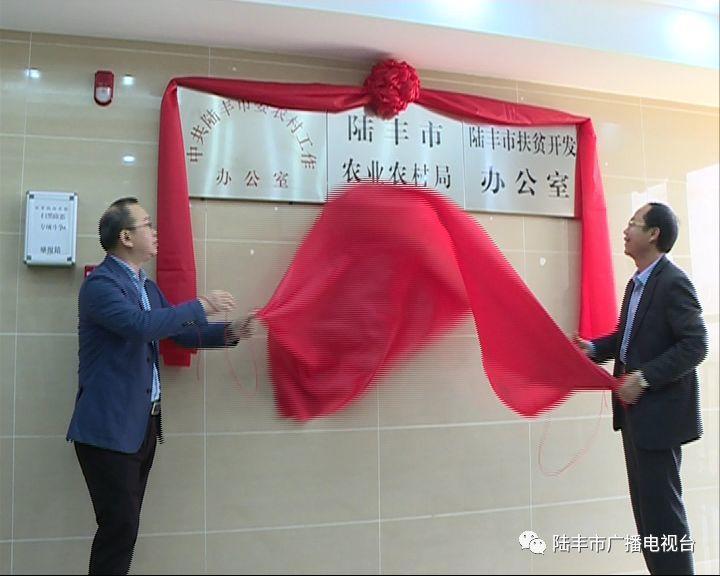 陆丰市一批新成立的工作机构挂牌 陆丰 第35张