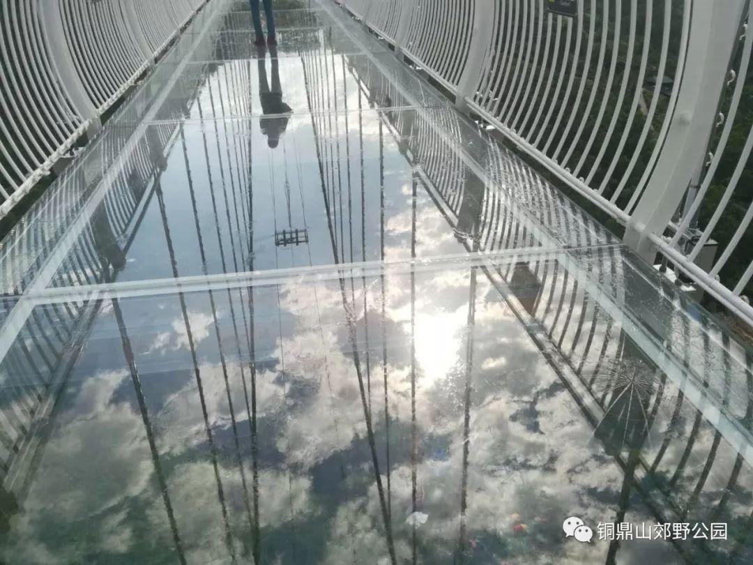 汕尾市铜鼎山旅游景区 粤东大型3D玻璃桥开通 汕尾新闻 第6张