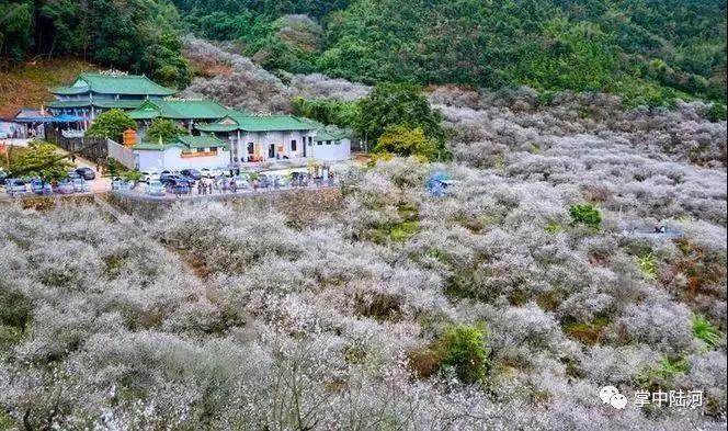 100个广东省文化和旅游特色村名单公示 汕尾共4个村入选 汕尾新闻 第2张