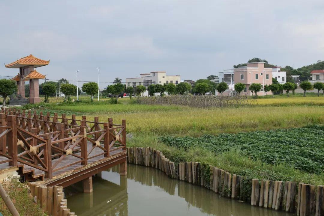 100个广东省文化和旅游特色村名单公示 汕尾共4个村入选 汕尾新闻 第6张