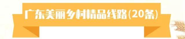 """海丰县附城镇新山村获选""""首届广东十大美丽乡村""""(视频) 海丰新闻 第19张"""