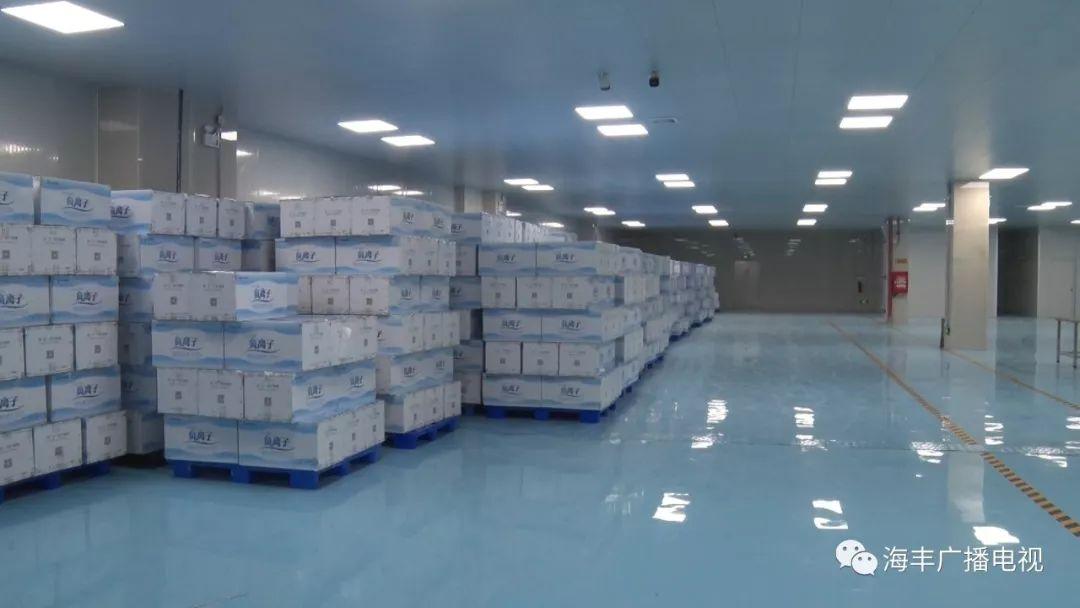 海丰本地两口罩厂即将投产 海丰新闻 第2张