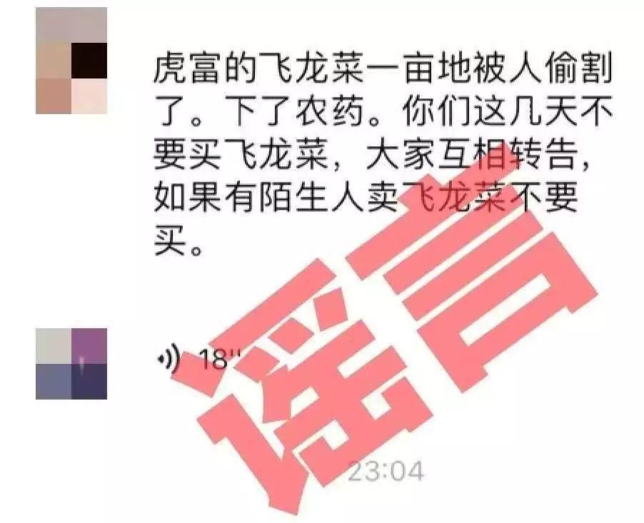 """陆丰""""碣石下农药飞龙菜被偷割""""是谣言 造谣嫌疑人被抓 陆丰新闻 第1张"""