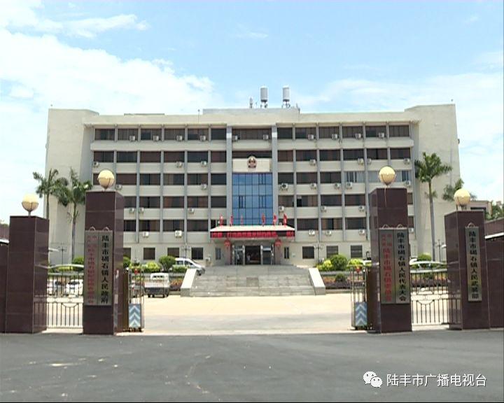 陆丰碣石镇的8个省定贫困村已实现100%脱贫 陆丰新闻 第1张