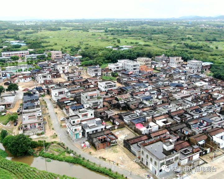 陆丰碣石镇的8个省定贫困村已实现100%脱贫 陆丰新闻 第2张