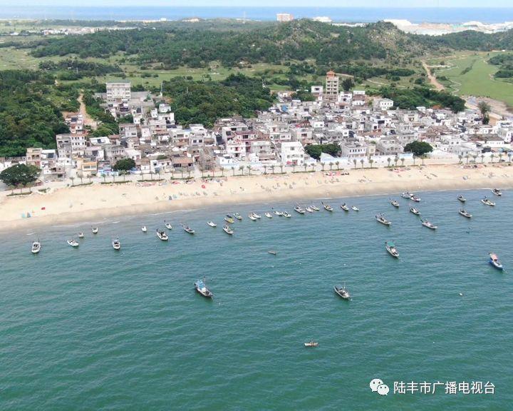 陆丰碣石镇的8个省定贫困村已实现100%脱贫 陆丰新闻 第8张