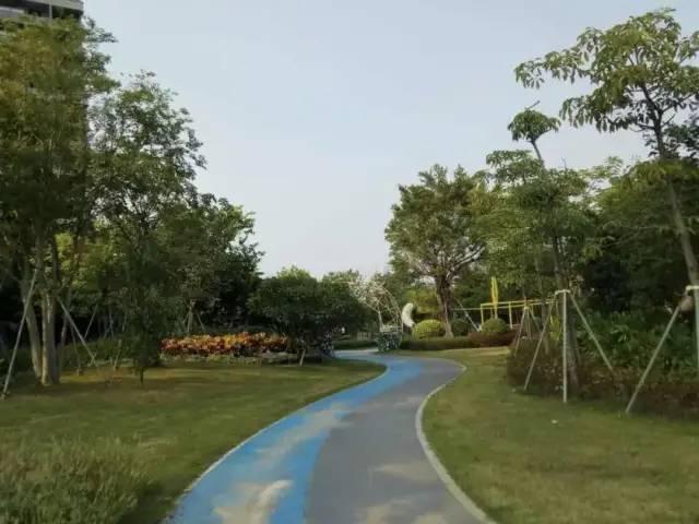 离汕尾市区最近的湿地公园:雅居乐山海郡湿地公园 汕尾新闻 第3张