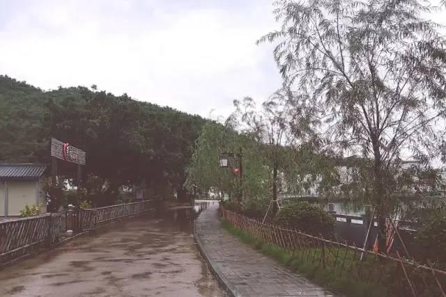 红色印记 ︳海丰新山村 海丰新闻 第11张