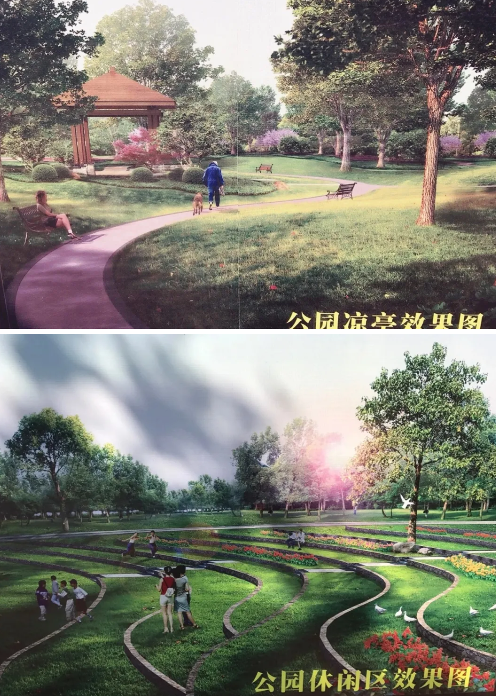 陆丰东海玉照公园即将升级改造 陆丰新闻 第3张