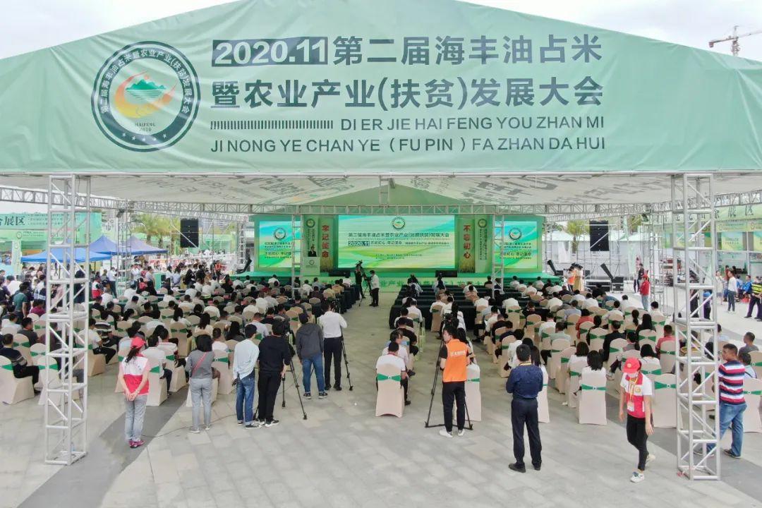 第二届海丰油占米暨农业产业发展大会开幕 海丰新闻 第2张
