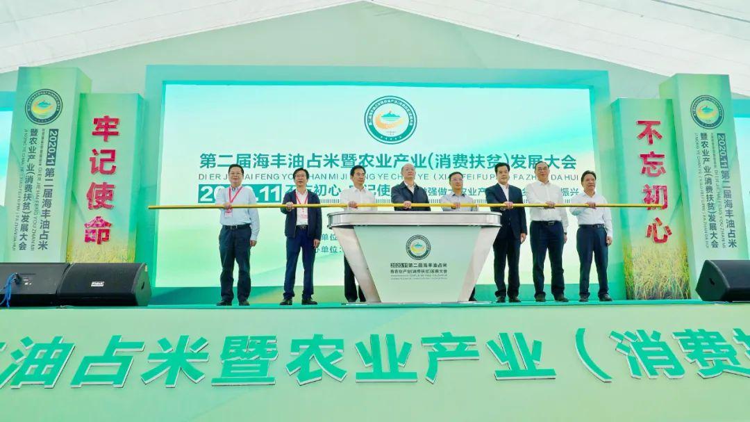 第二届海丰油占米暨农业产业发展大会开幕 海丰新闻 第3张