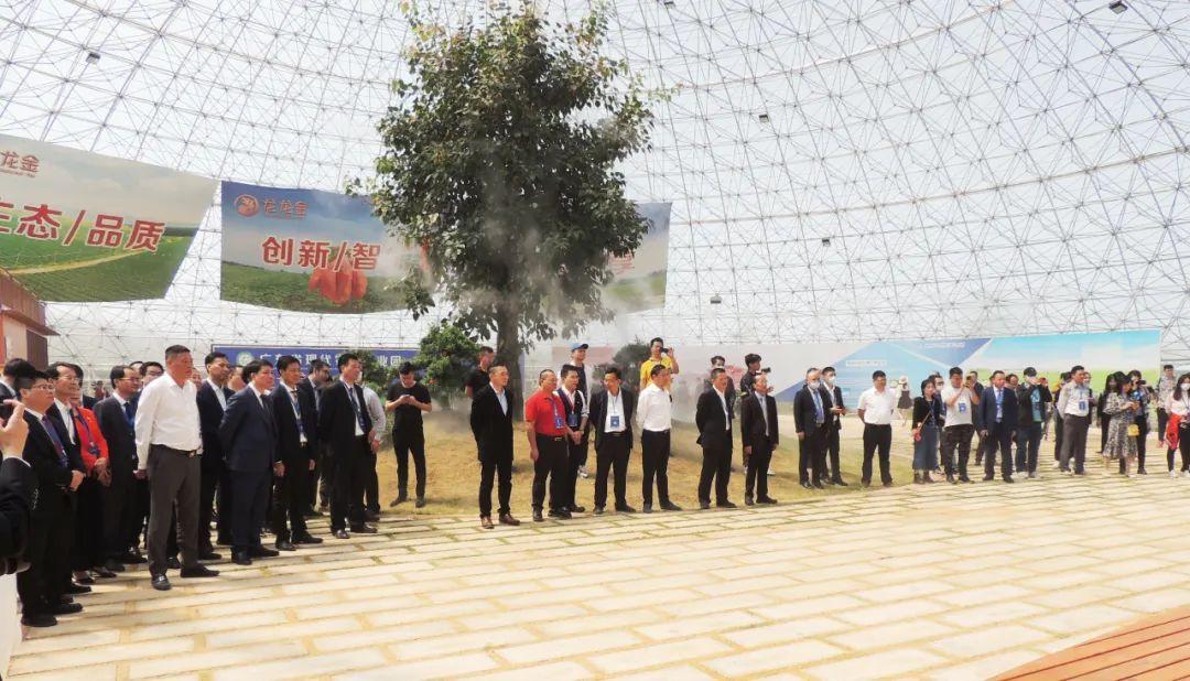 植物龙将在碣石启动建设陆丰龙龙金智慧农业旅游城 陆丰新闻 第1张